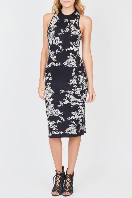 Hummingbird Print Dress